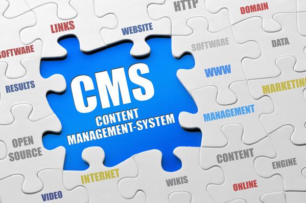 Wordpress CMS Developemnt
