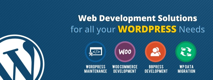 Wordpress Development Firm