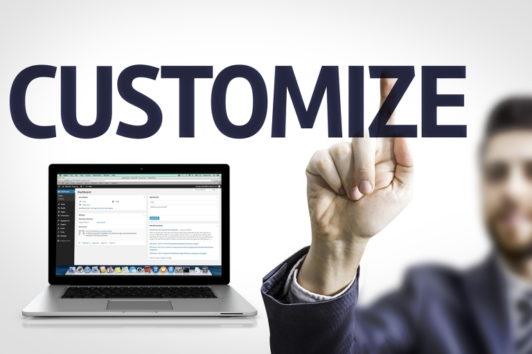 WordPress Customizaion