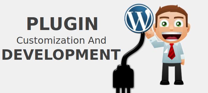 plugin customization and development